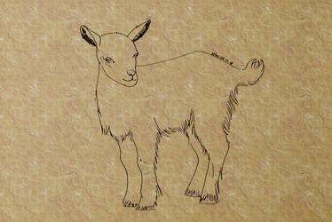 #5 Goat