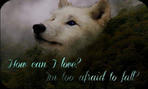 War of Change Loveless AU Kiwi2_by_my_chaotic_fire-d7fnris