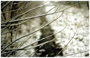 ............... by NiklasAndersson