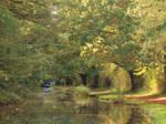Dappled Waters