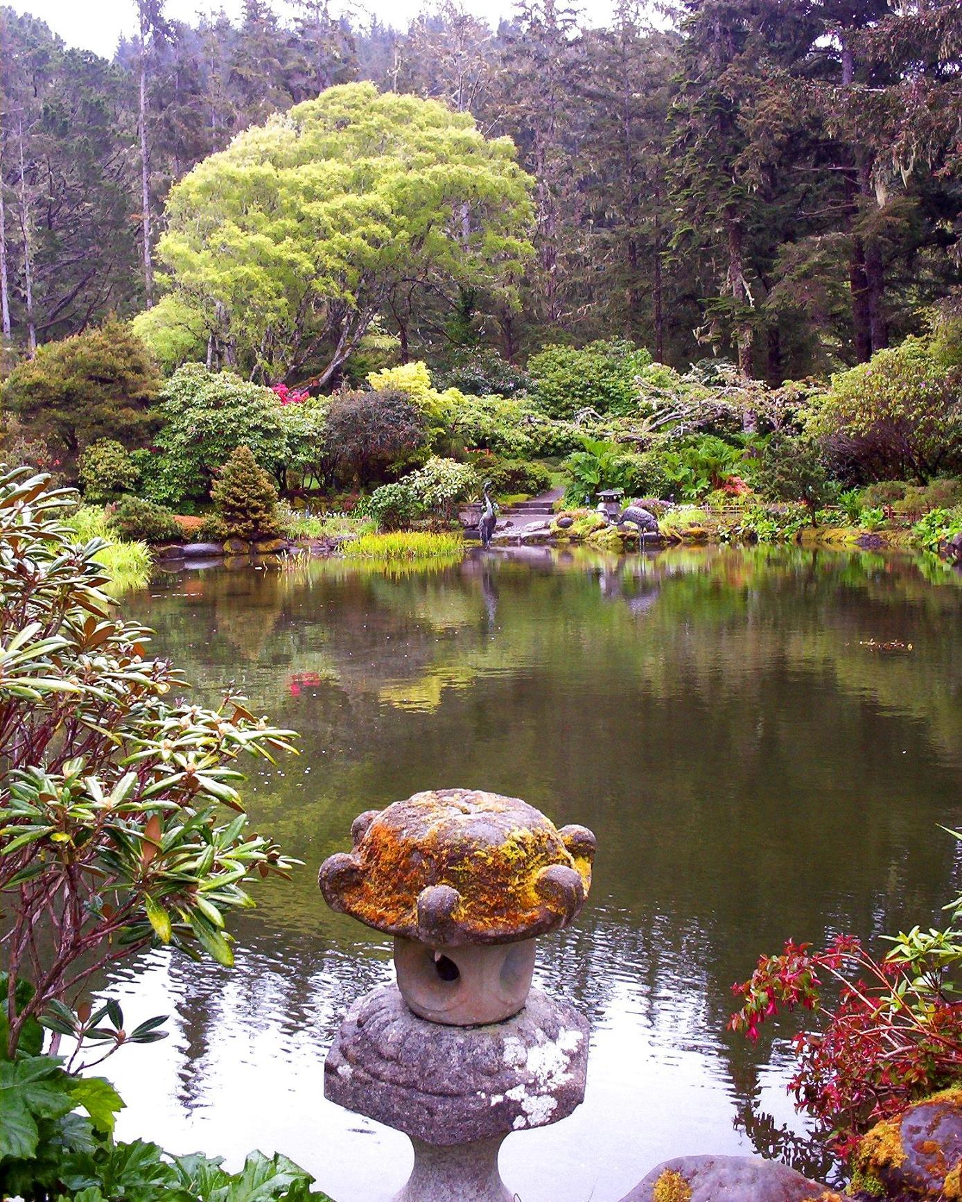 Japanese koi pond 1 by shamangovannon on deviantart for Japanese koi pond