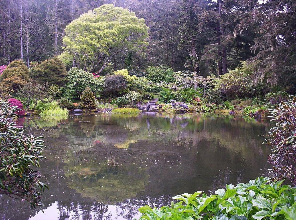 Japanese koi pond 2 by shamangovannon on deviantart for Japanese koi pool