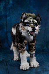 Wolf-Link Quad suit - Ayacon09