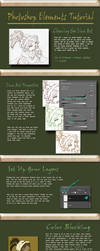 Photoshop Elements Tutorial by Tsuchan