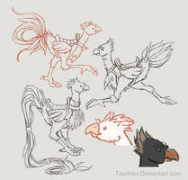 Chocobo Variations: Onagadori and Raven