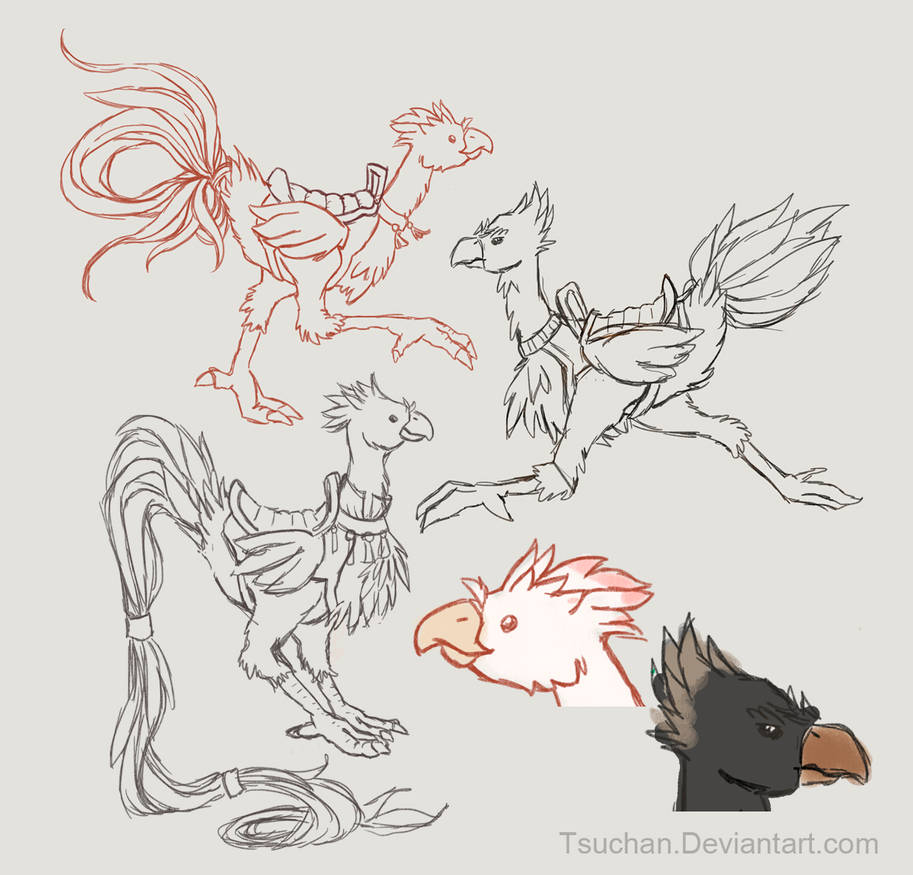Chocobo Variations: Onagadori and Raven by Tsuchan