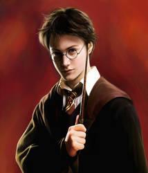 Harry Potter by chuanerya