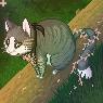[G] Kitten Port by rhyme