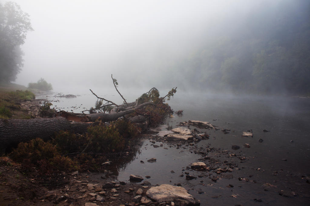 Misty River 2 by Salamander-Stock