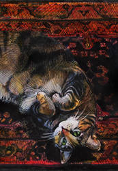cat nap by hannah1796