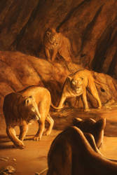 Lions detail by DouglasRamsey