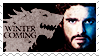 Robb Stark stamp by psyxi0