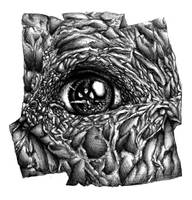 Eye by Pyreshard