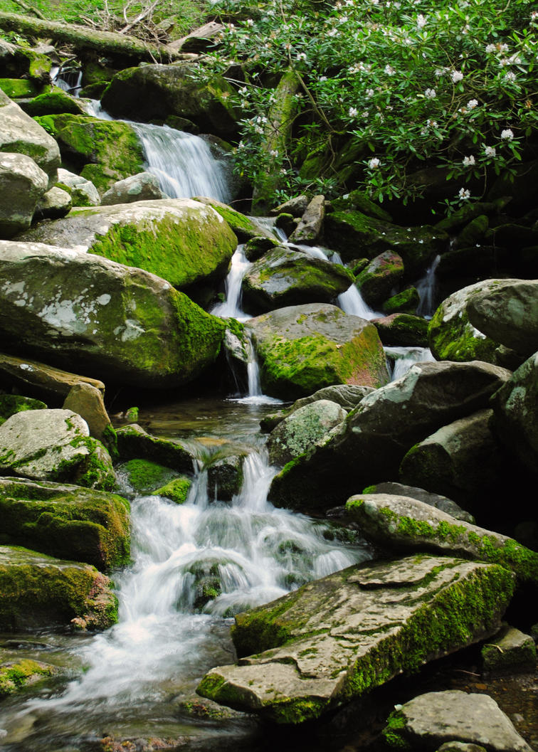 Smoky Mountain Waterfall by RawPoetry