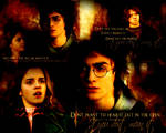 Harry and Hermione.