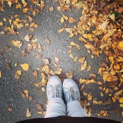 autumn by TeRuKi-chan