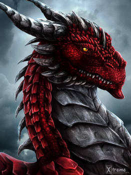 Dragon Portrait