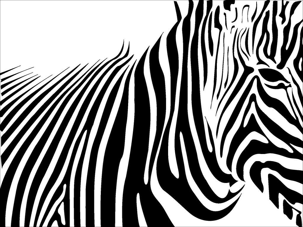 zebra skin by skatalystZebra Skin Wallpaper
