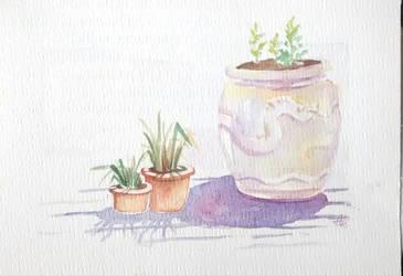 Pots and shadows