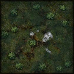 Swamp Map by simetradon