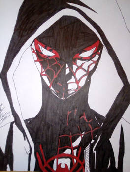 Spider-Man into the spider-verse (Miles Morales)