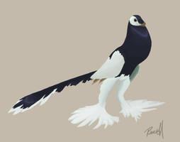 microraptor by halfpennyro04
