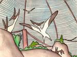 Pteranodon enclosure