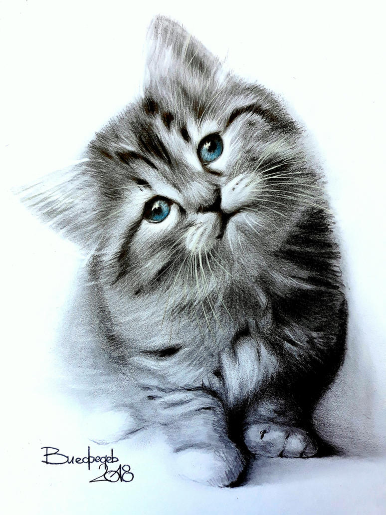 Kitty listening music by Vladimir12908