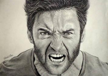 Wolverine by Daviddiaspr