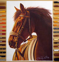 Realistic Horse   By: David Dias by Daviddiaspr