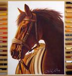 Realistic Horse | By: David Dias
