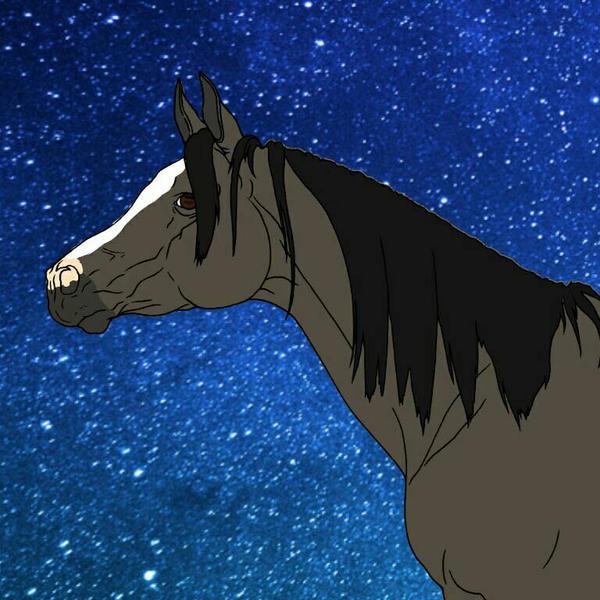 Arabian Horse Head by StonePathCreations