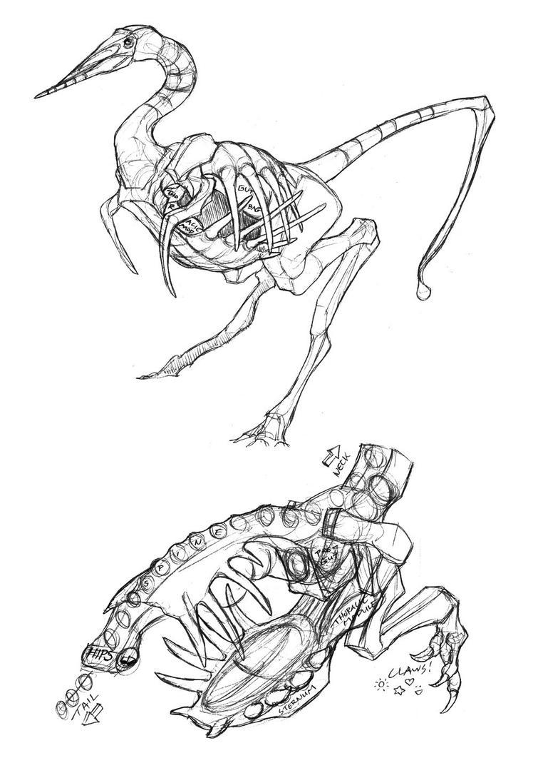 dino flytrap anatomy studies by thomastapir on deviantart