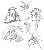 Orchid Biodrones by thomastapir