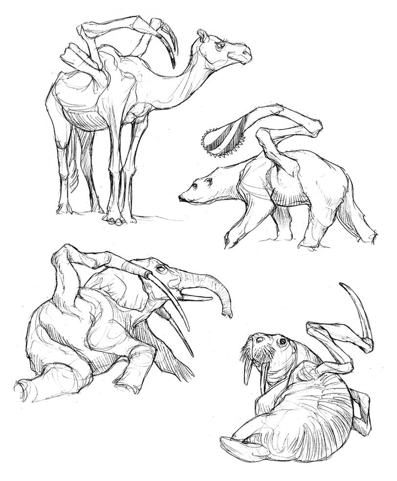 Raptorial Mammal Studies by thomastapir