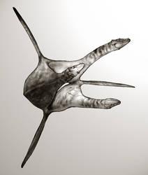 Geryon by thomastapir