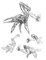 Bonecks by thomastapir