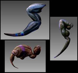 Stomatosoldier Limb Studies
