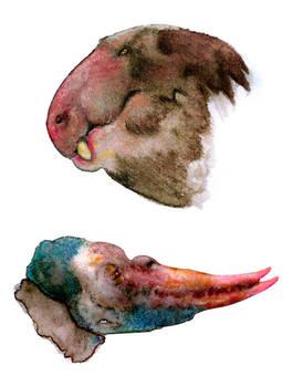 Paleosophonts