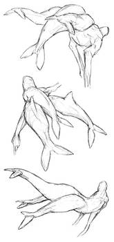 Melusine Studies