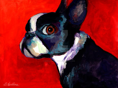 Boston Terrier 2 Novikova by SvetlanaNovikova