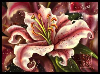 Lily by KatCardy