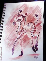 Baby Zebra by KatCardy