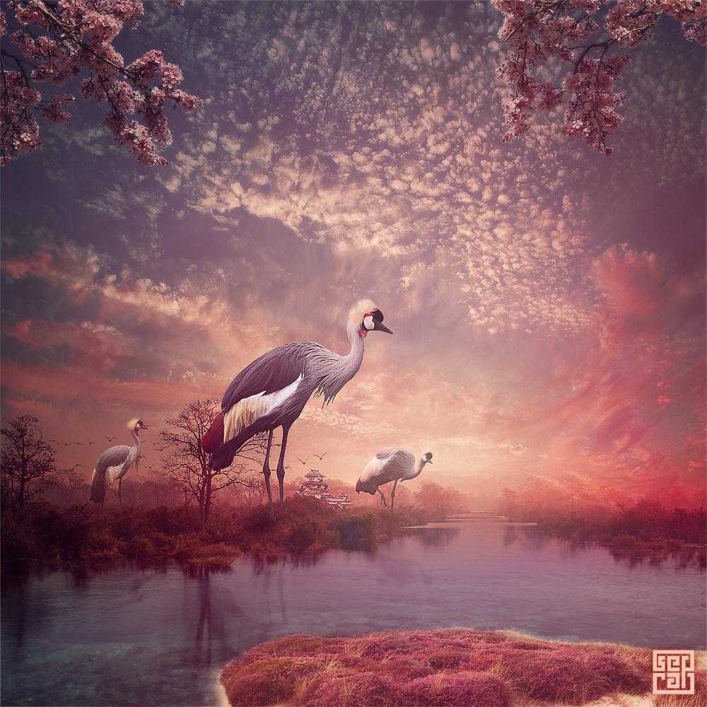 Crane Gods by Sed-rah