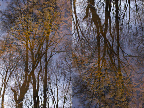 Double reflections