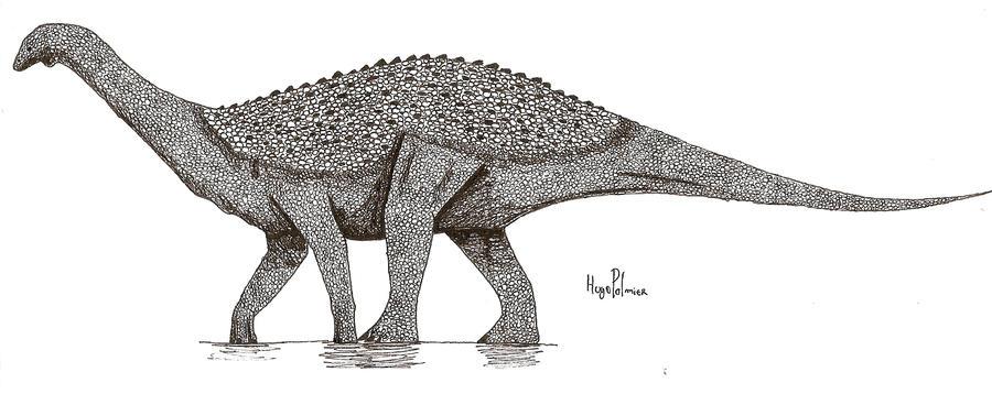 Saltasaurus by dinosaurusbrazil