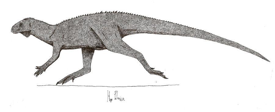 Pisanosaurus mertii by dinosaurusbrazil
