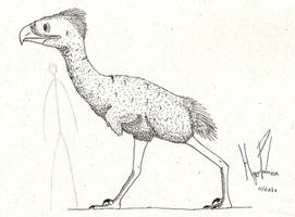 Gagar by dinosaurusbrazil