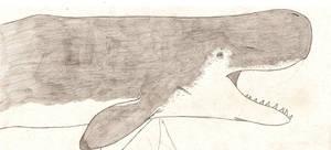 Livyatan melvillei by dinosaurusbrazil