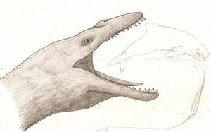 Pliosaurus by dinosaurusbrazil